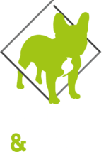 Bull&Box-full-logo